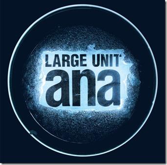 Large Unit