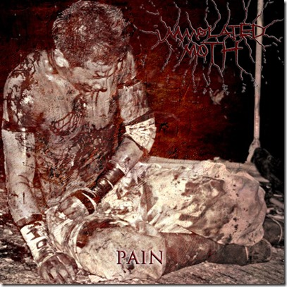 immolated moth pain cover smaller