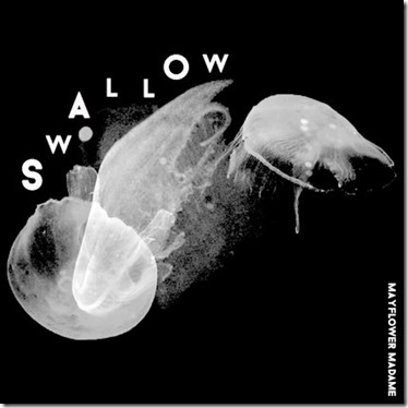 Mayflower - Swallow